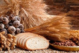 Alergia al gluten